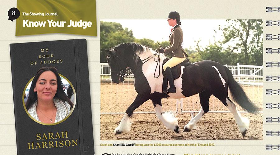 Know Your Judge – Sarah Harrison