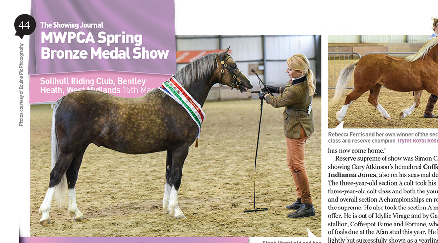 MWPCA Spring Bronze Medal Show, 15th March
